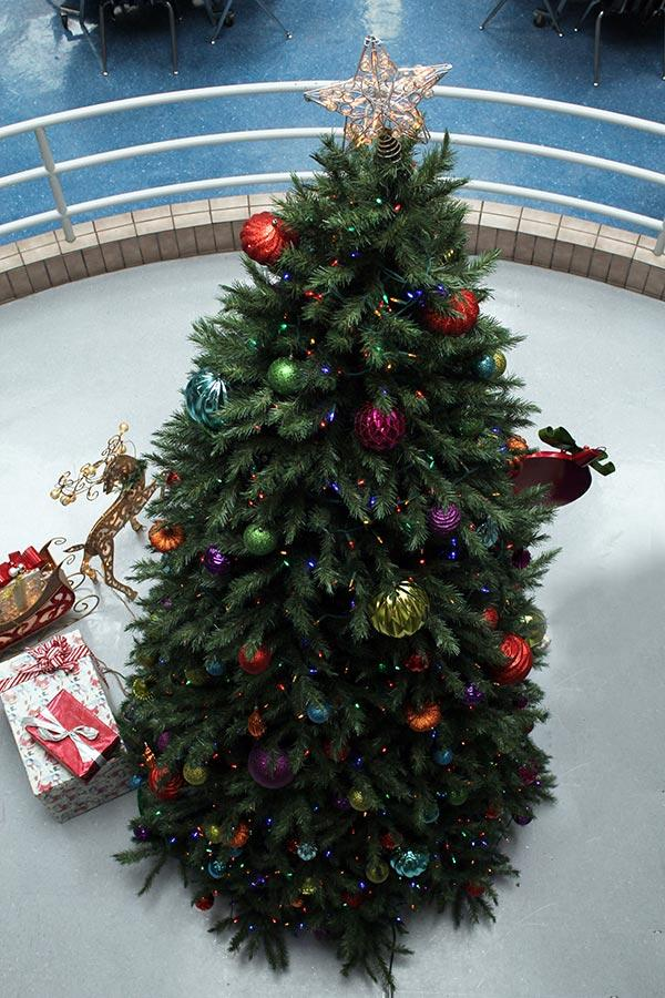 Campus Christmas tree.
