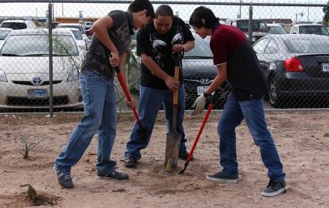 Volunteers help bring back school garden
