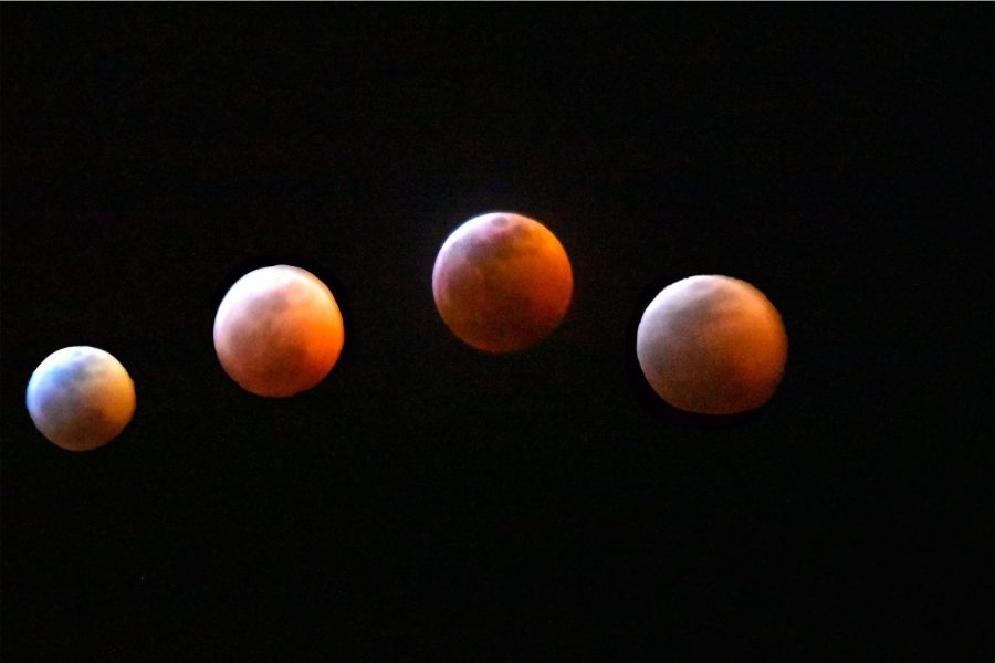 Phases+of+the+Super+Blood+Wolf+Moon+Eclipse+Jan.+20%2C+in+Phoenix+AZ.+