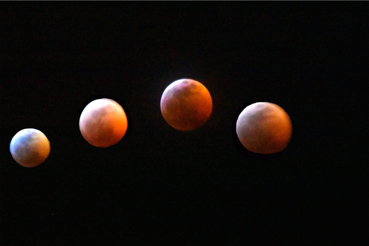 Phases of the Super Blood Wolf Moon Eclipse Jan. 20, in Phoenix AZ.