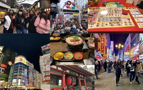 Students take a spring trip to Japan