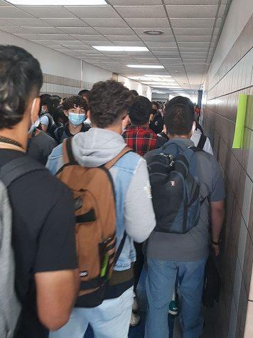 Social distancing forgotten in school halls